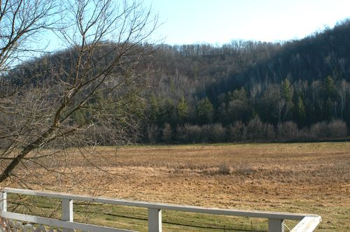 Family farm   Clean : : the LuSa Organics Blog