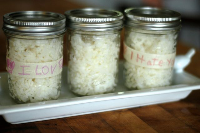 "How to do an ""I LOVE YOU"" ""I HATE YOU"" rice experiment 