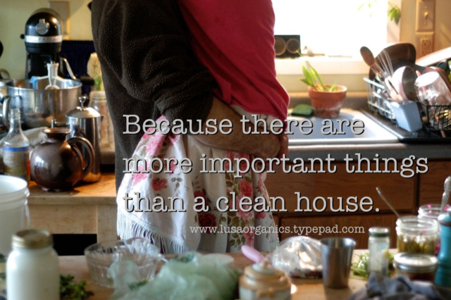 Because there are more important things than a clean house | www.lusaorganics.typepad.com