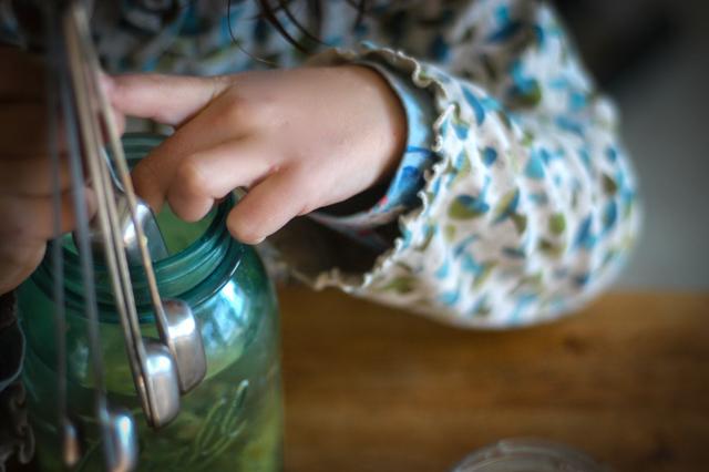 DIY Ginger Bug Soda Recipe : : Rachel Wolf : : Clean