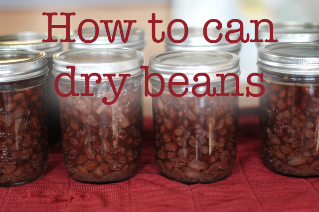 How To Pressure Can Dry Beans Clean