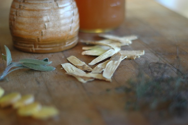 Hot Toddy: reinvented {recipes for cold season}
