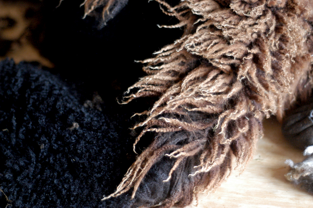 Shearing day : : www.lusaorganics.typepad.com : : Rachel Wolf